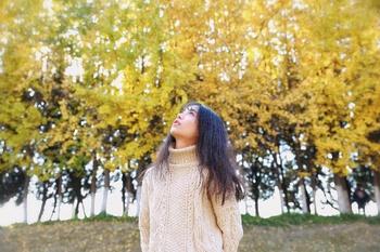 秋天 银杏黄了 杭州